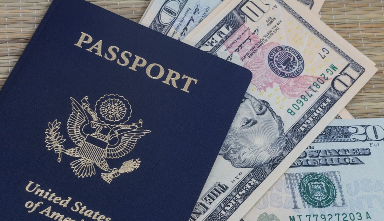 Reddito di cittadinanza per gli USA?